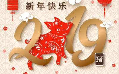 Happy Chinese New Year – it's the Year of the Pig!